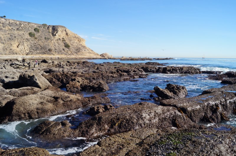 What Is A Tide Pool California Tide Pools